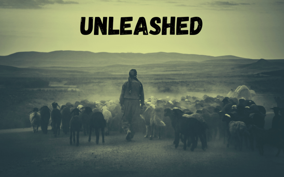 Unleashed – 6/3/20